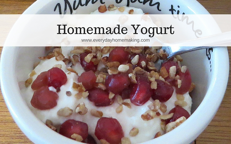 homemade yogurt | www.everydayhomemaking.com