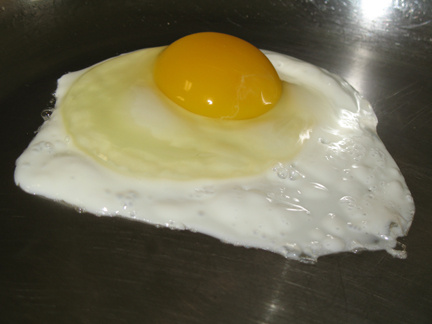 Egg in Stainless Steel Pan -- Everyday Homemaking