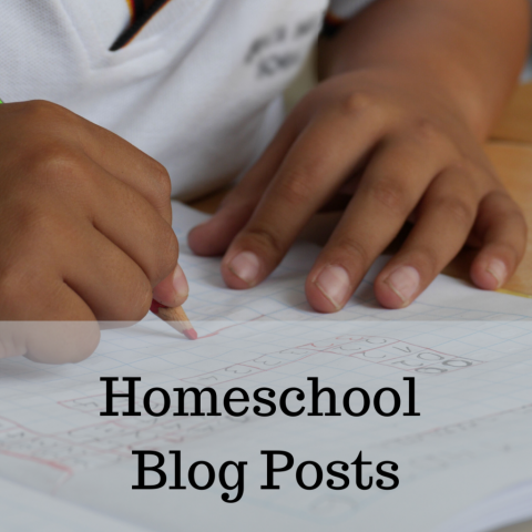 Homeschool posts and articles from Vicki Bentley