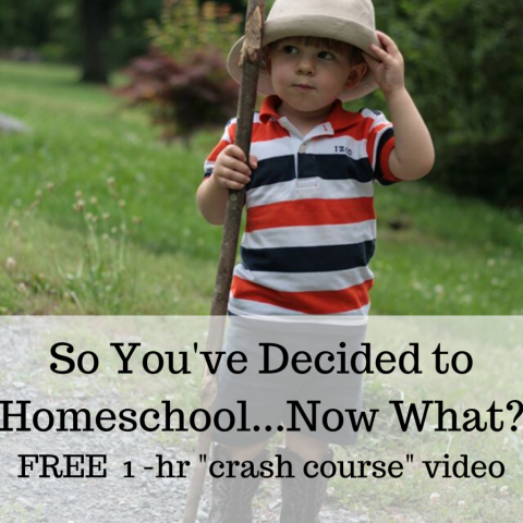 free one-hour video crash course in homeschooling