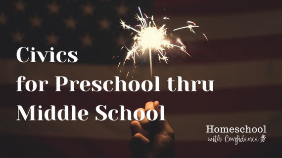flag and sparklers Civics for Ps through middle school